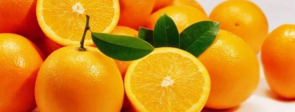 赣南脐橙网